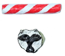 Racoon Candy_web