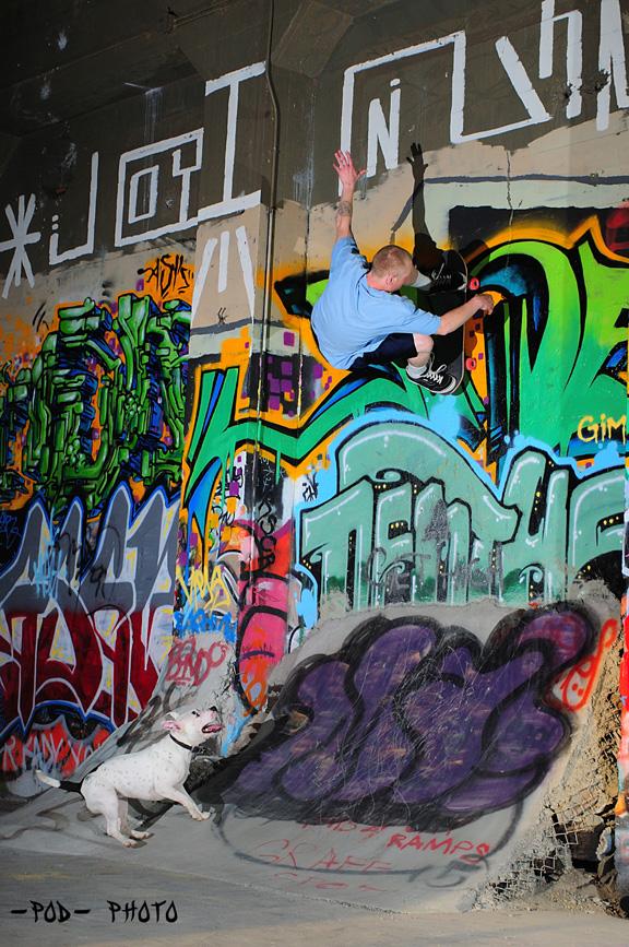 Wall Fakie Mag Dog_web